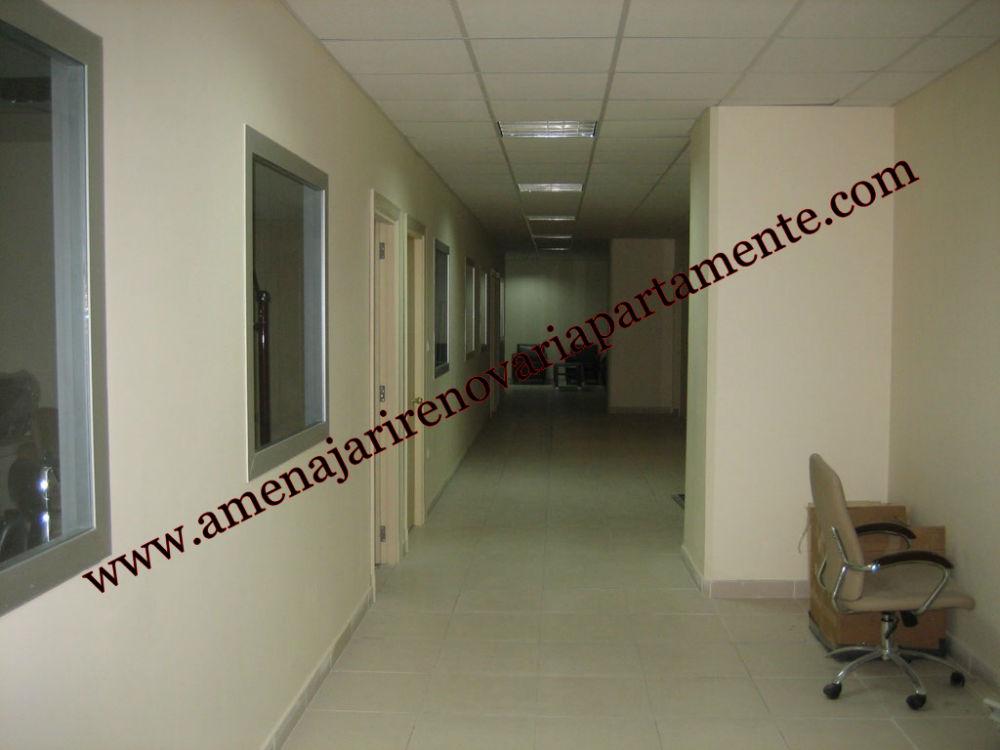 Zugrăveli Interioare, Amenajări Case, Renovări Apartamente Bucureşti (6)