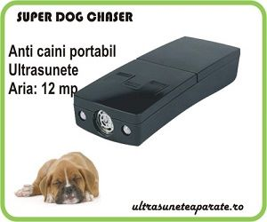 superdog_1
