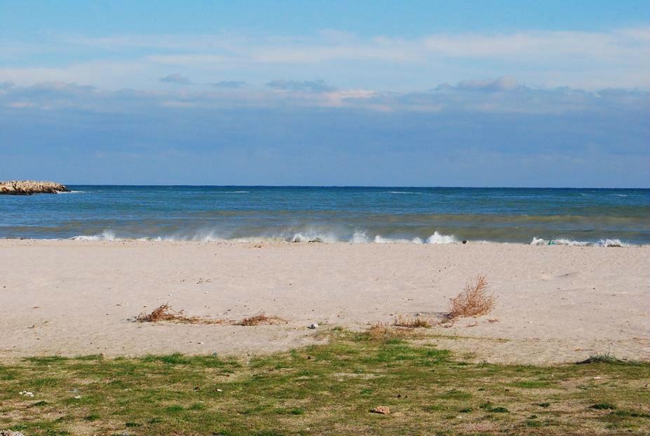 teren-pe-plaja-2-mai-constanta-5