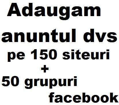 1-AnuntinTop